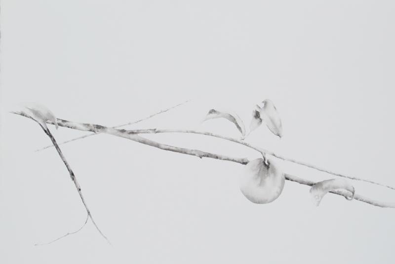 blanco-y-negro-acuarela